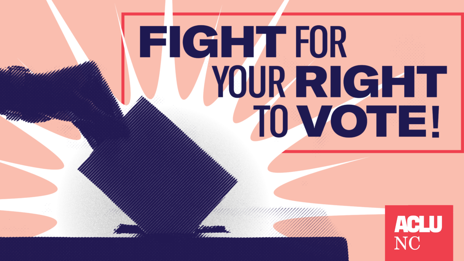 Fight for your right to vote!