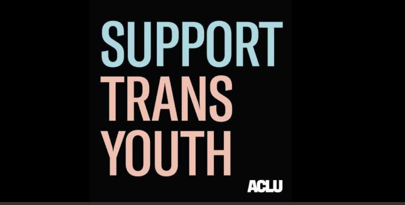 Support Trans Youth!
