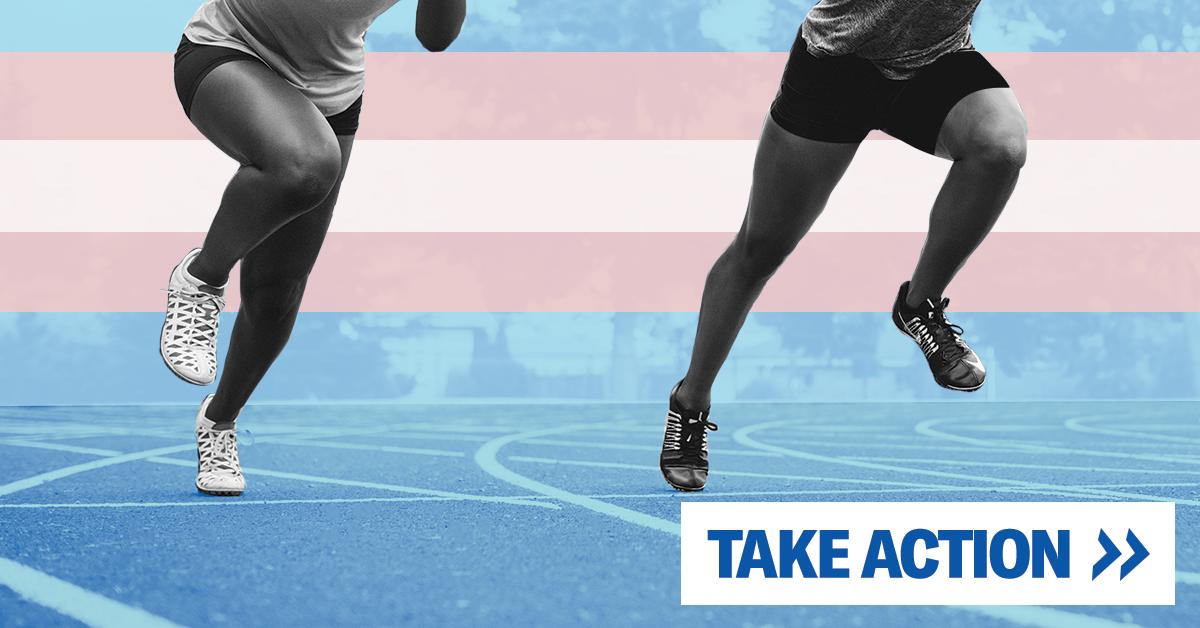 Take Action - Transgender Rights